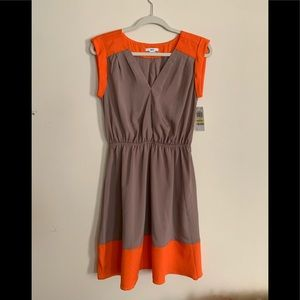Women's dress NWT, From Macy's, color block design